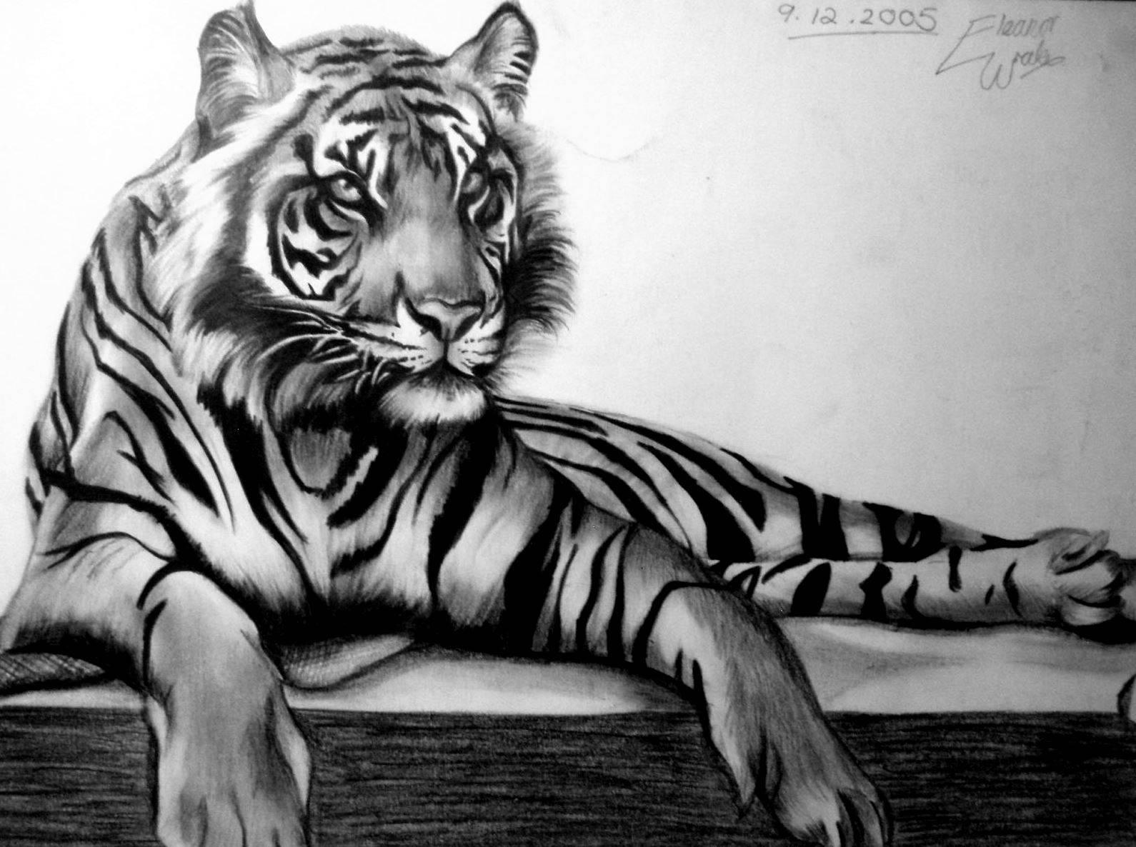 hogyan kell kezelni a pikkelysmr tigris szemvel)